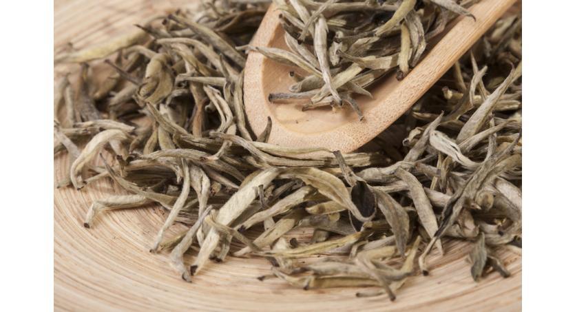 Weißer Tee - mehr Natürlichkeit für den Körper