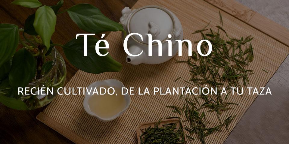 Comprar té chino en línea directa de china