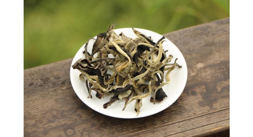 The Origin of Moonlight White Tea: Is Moonlight Beauty a White or Pu Erh Tea?