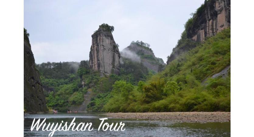 Wuyishan Tour: Tea Tasting, Sourcing & Educational Tours