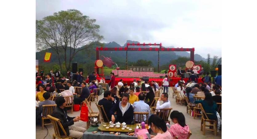 Tea Competition: Wuyishan's Annual King of Tea Tournament