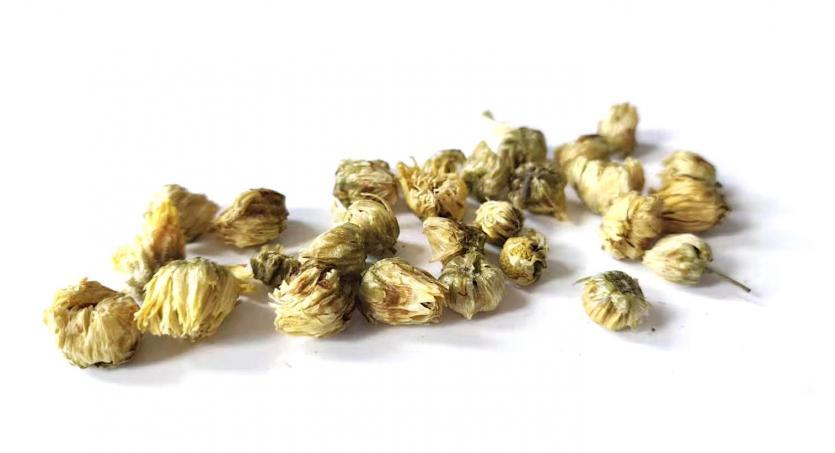 Chrysanthemum Tea During Pregnancy & Breastfeeding