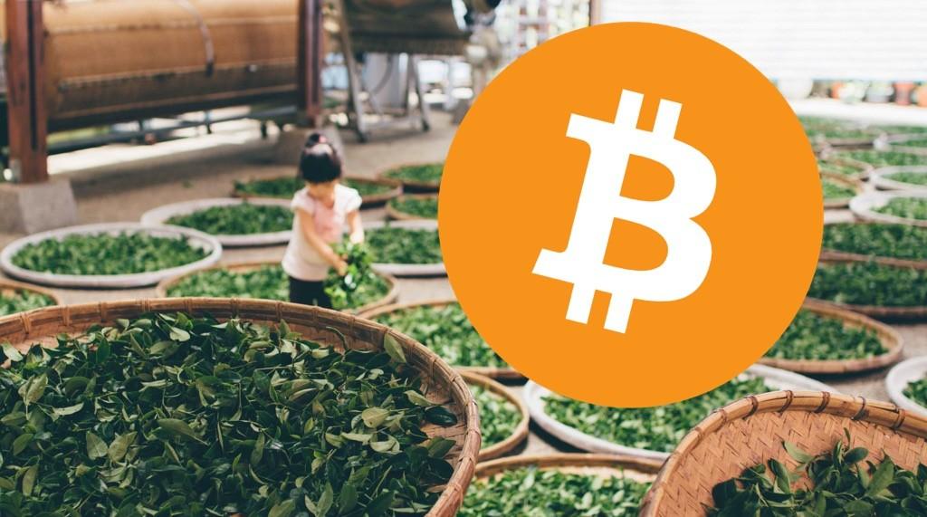 Buy Tea With Bitcoin!