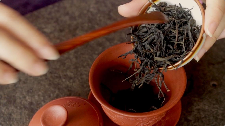 hoe oolong thee zetten