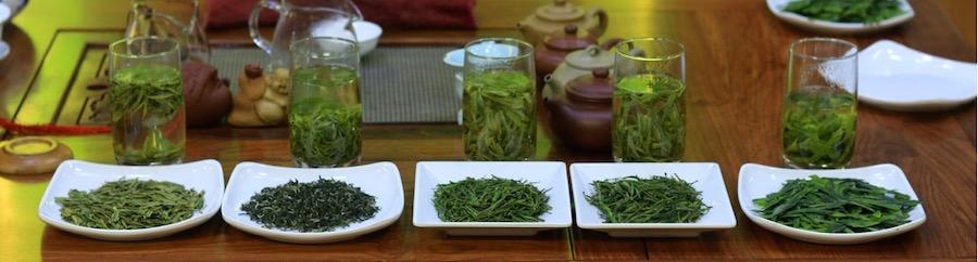 2016 spring green teas