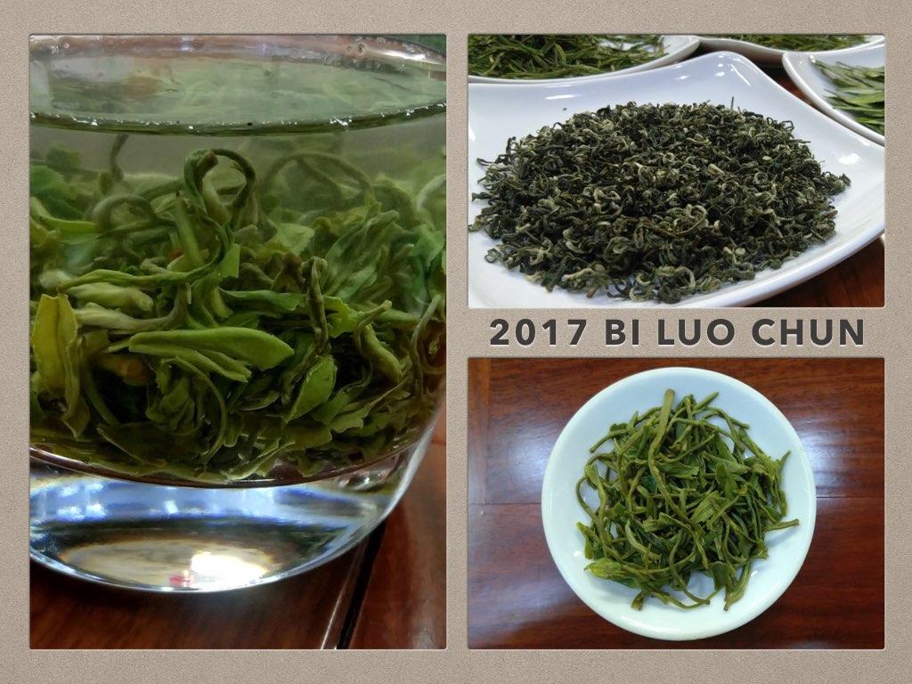 2017 bi luo chun green tea