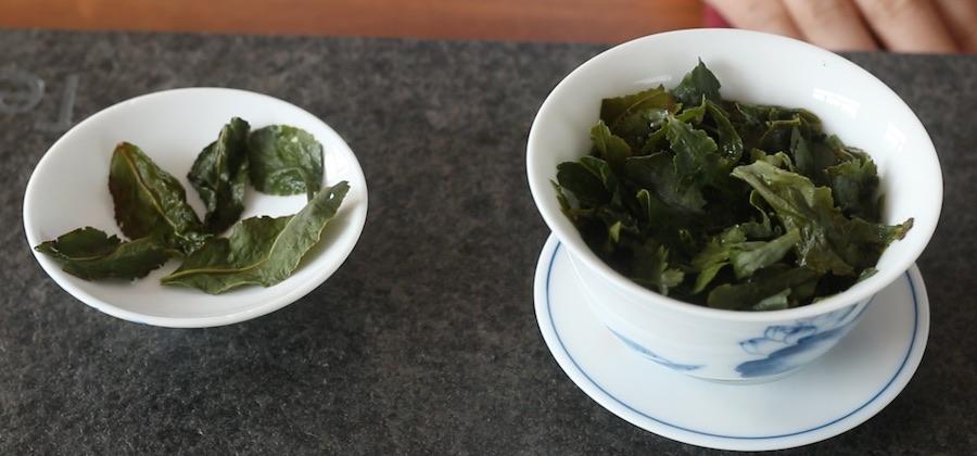 tie guan yin appearance vs green tea