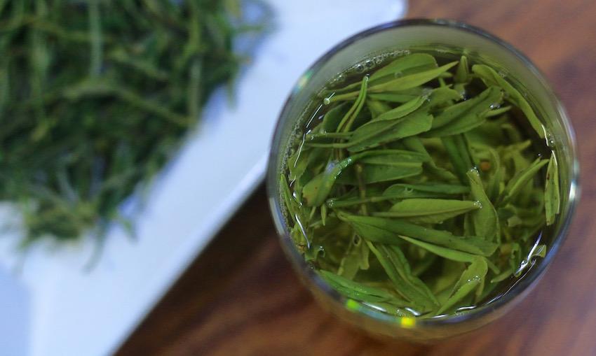2016 spring green teas - huang shan mao feng tasting
